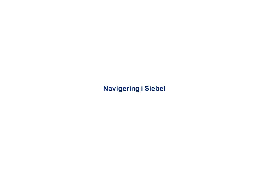 Navigering i Siebel – skärmbildsöversikt MenySkärm Logga ut Fördefinierade frågor List Applet Form Applet Kundpost Postväljare Filter MVG knapp Platskarta Visa mer Hyperlänk Vy - 5 -