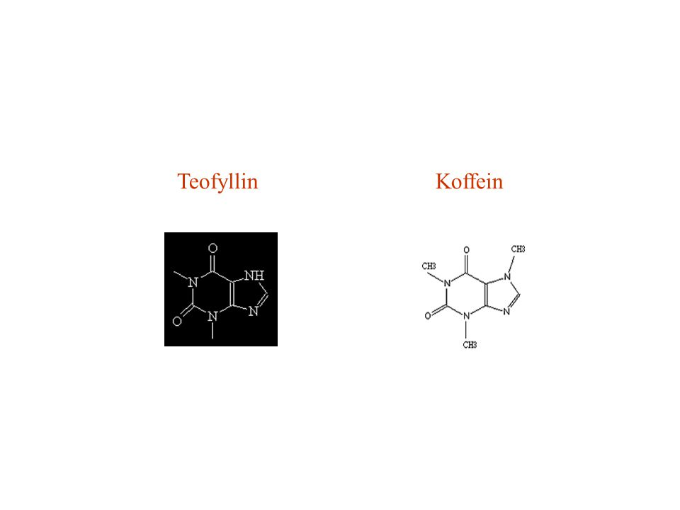 Antiinflammatorisk behandling: • Glukokortikosteroider • Antileukotriener • Natriumkromoglikat