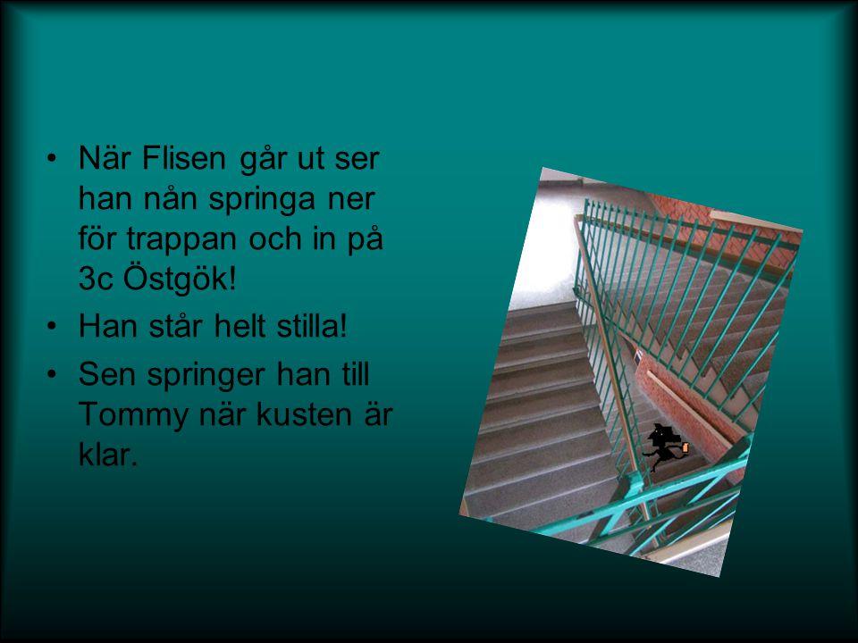 •När Flisen går ut ser han nån springa ner för trappan och in på 3c Östgök! •Han står helt stilla! •Sen springer han till Tommy när kusten är klar.