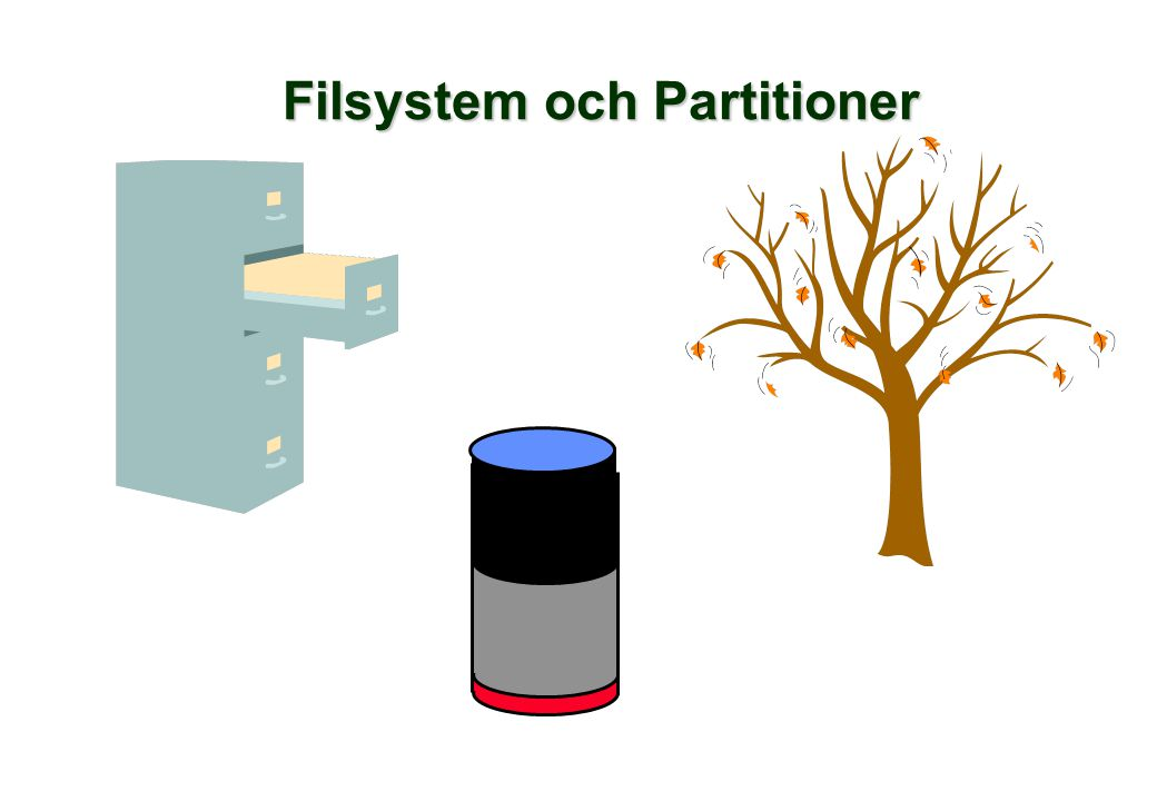 Filsystem och Partitioner