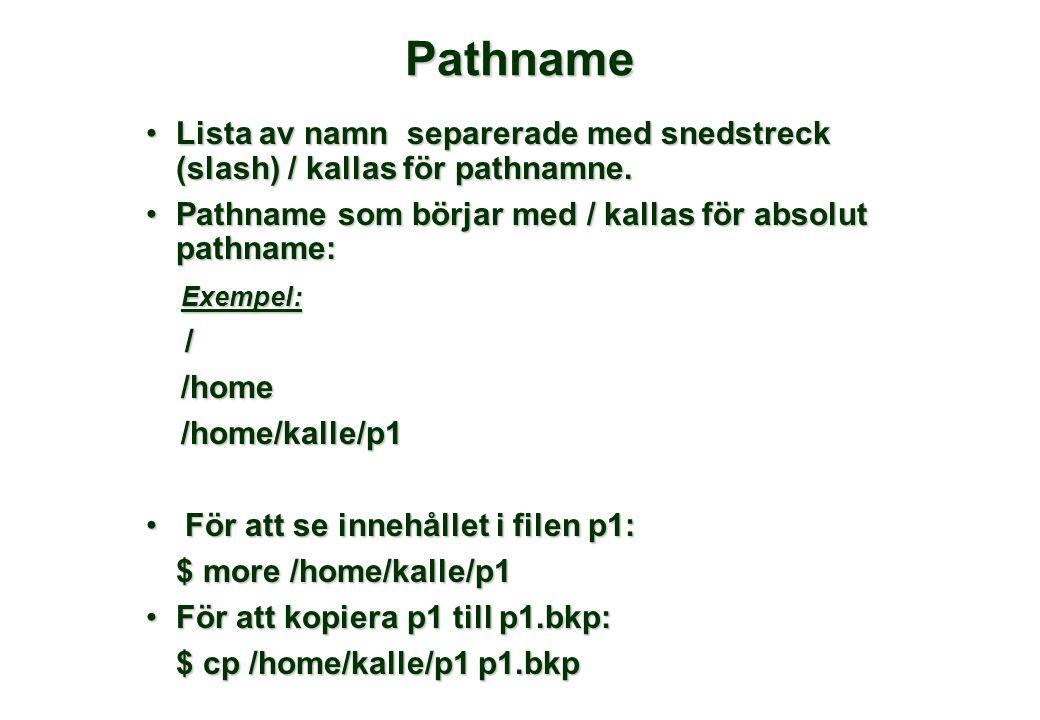 Pathname •Lista av namn separerade med snedstreck (slash) / kallas för pathnamne. •Pathname som börjar med / kallas för absolut pathname: Exempel: Exe
