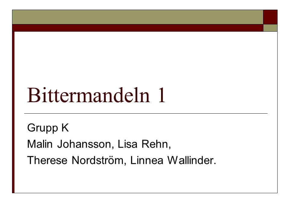 Bittermandeln 1 Grupp K Malin Johansson, Lisa Rehn, Therese Nordström, Linnea Wallinder.