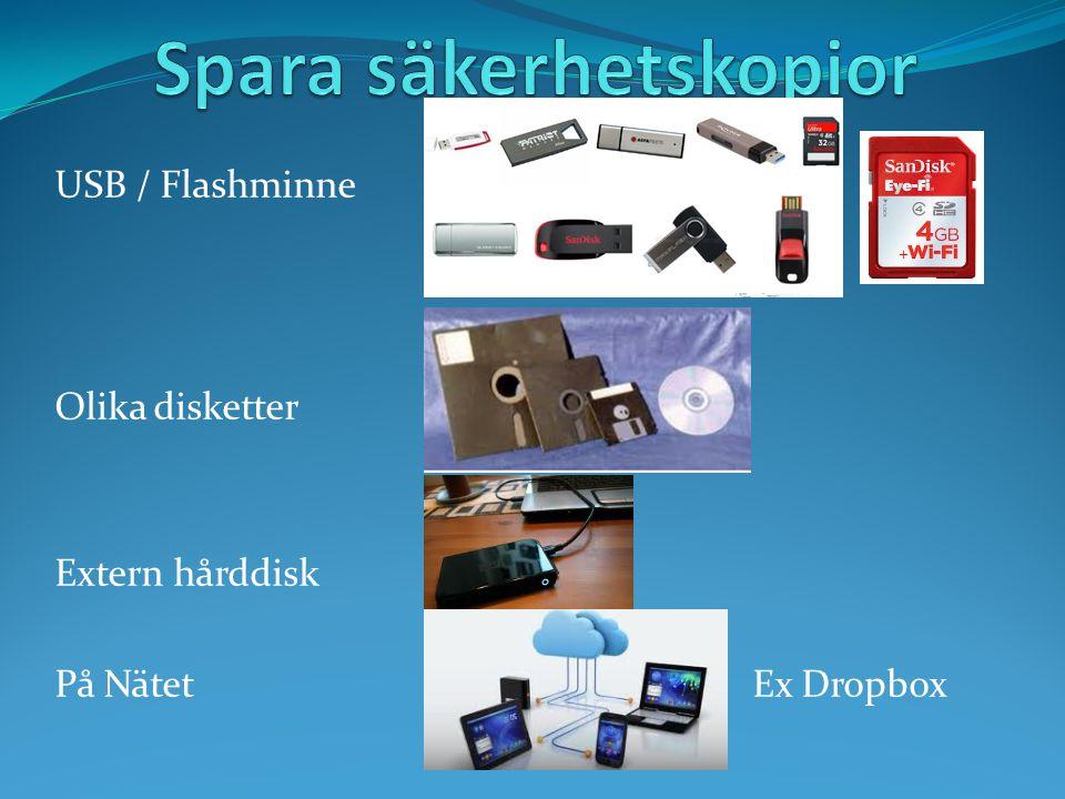 USB / Flashminne Olika disketter Extern hårddisk På Nätet Ex Dropbox