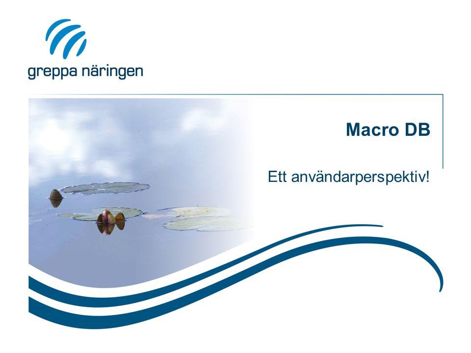 Macro DB Ett användarperspektiv!