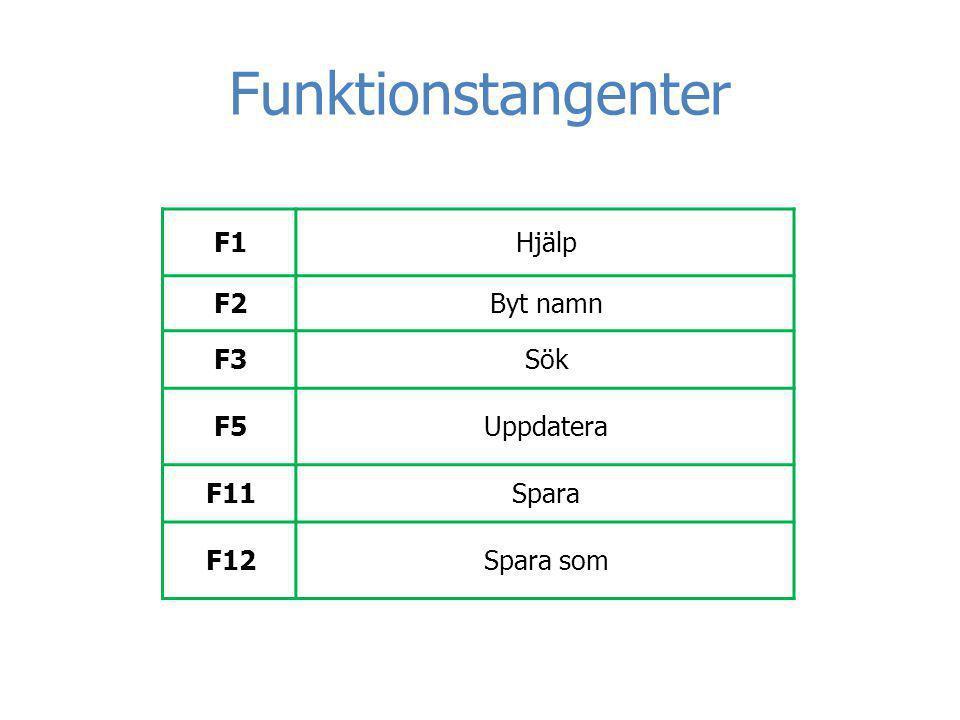 Funktionstangenter HjälpF1 Byt namnF2 SökF3 UppdateraF5 SparaF11 Spara somF12