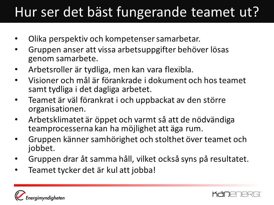 Hur ser det bäst fungerande teamet ut.• Olika perspektiv och kompetenser samarbetar.