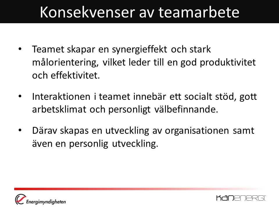 Konsekvenser av teamarbete • Teamet skapar en synergieffekt och stark målorientering, vilket leder till en god produktivitet och effektivitet.
