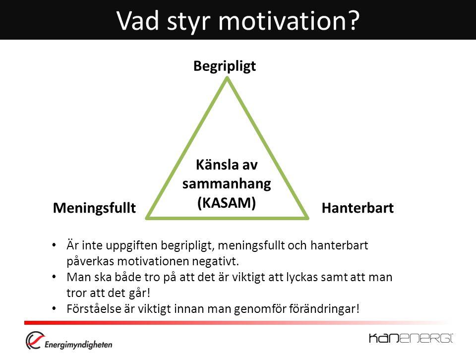 Vad styr motivation.
