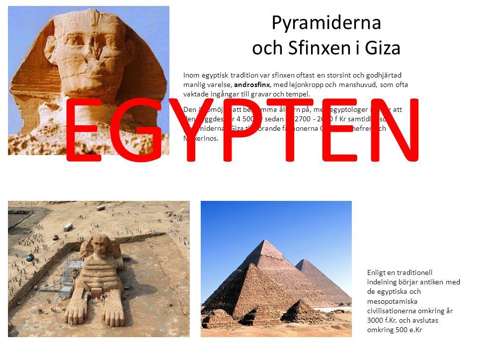 Inom egyptisk tradition var sfinxen oftast en storsint och godhjärtad manlig varelse, androsfinx, med lejonkropp och manshuvud, som ofta vaktade ingån