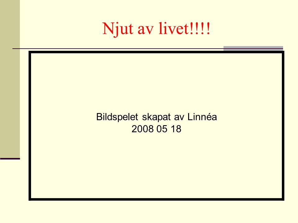 Njut av livet!!!! Bildspelet skapat av Linnéa 2008 05 18