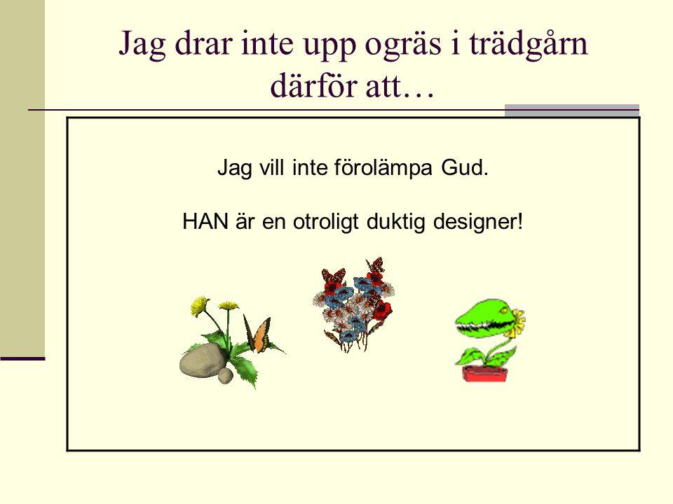 Jag drar inte upp ogräs i trädgårn därför att… Jag vill inte förolämpa Gud. HAN är en otroligt duktig designer!
