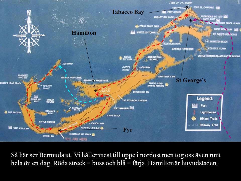Hamilton Fyr Tabacco Bay St George's Så här ser Bermuda ut.