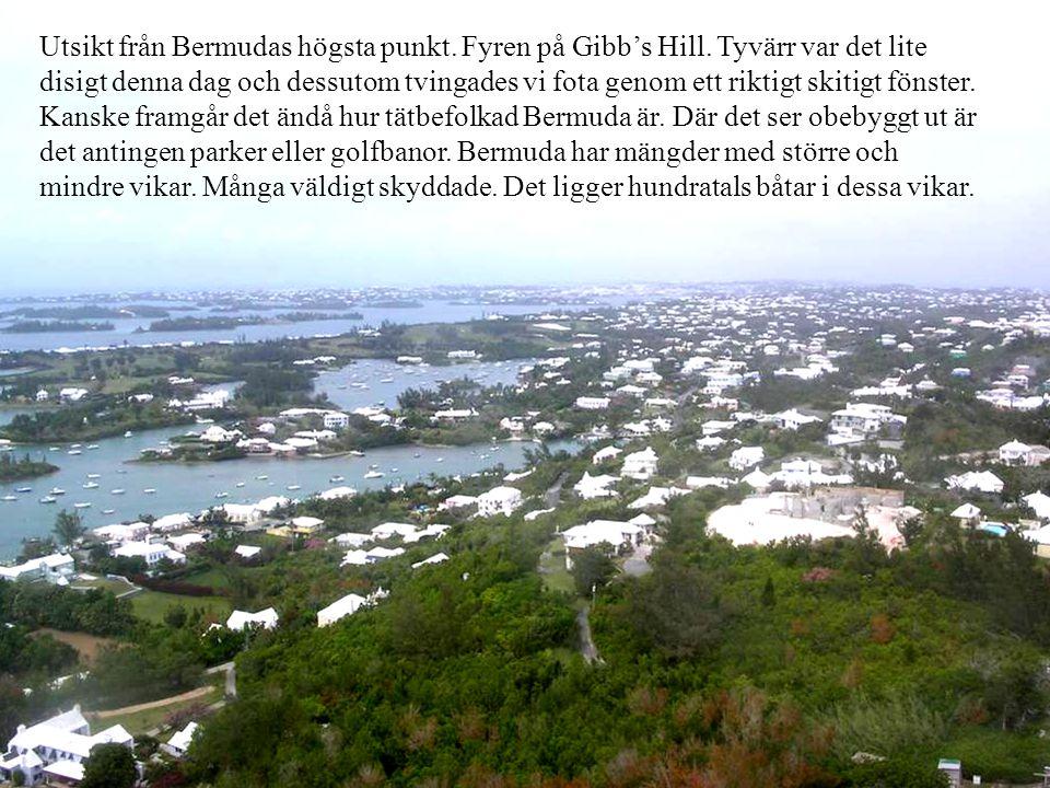 Utsikt från Bermudas högsta punkt. Fyren på Gibb's Hill.