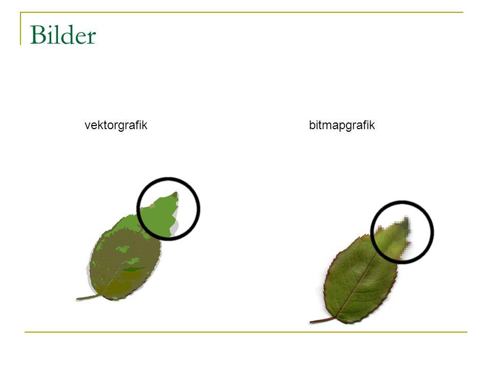 Bilder vektorgrafikbitmapgrafik