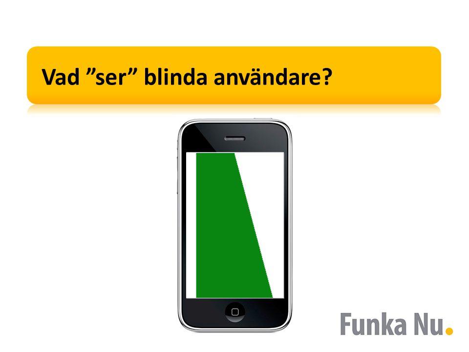Vad ser blinda användare