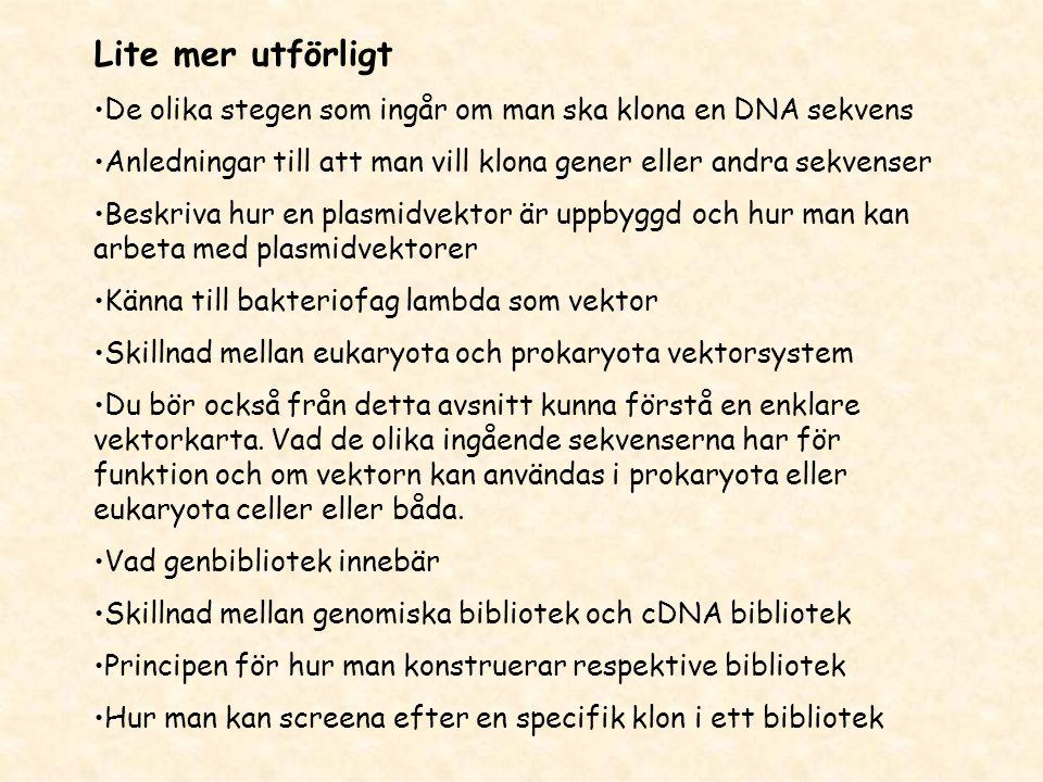 Lite mer utförligt •De olika stegen som ingår om man ska klona en DNA sekvens •Anledningar till att man vill klona gener eller andra sekvenser •Beskri