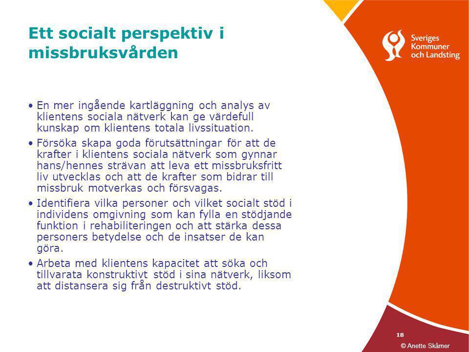 18 Ett socialt perspektiv i missbruksvården •En mer ingående kartläggning och analys av klientens sociala nätverk kan ge värdefull kunskap om klienten