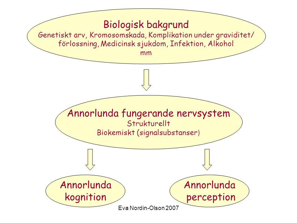 Eva Nordin-Olson 2007 Biologisk bakgrund Genetiskt arv, Kromosomskada, Komplikation under graviditet/ förlossning, Medicinsk sjukdom, Infektion, Alkohol mm Annorlunda fungerande nervsystem Strukturellt Biokemiskt (signalsubstanser ) Annorlunda kognition Annorlunda perception