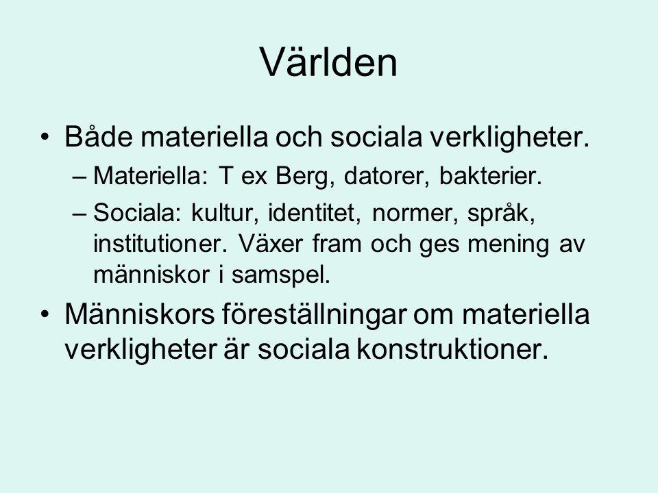 Världen •Både materiella och sociala verkligheter. –Materiella: T ex Berg, datorer, bakterier. –Sociala: kultur, identitet, normer, språk, institution