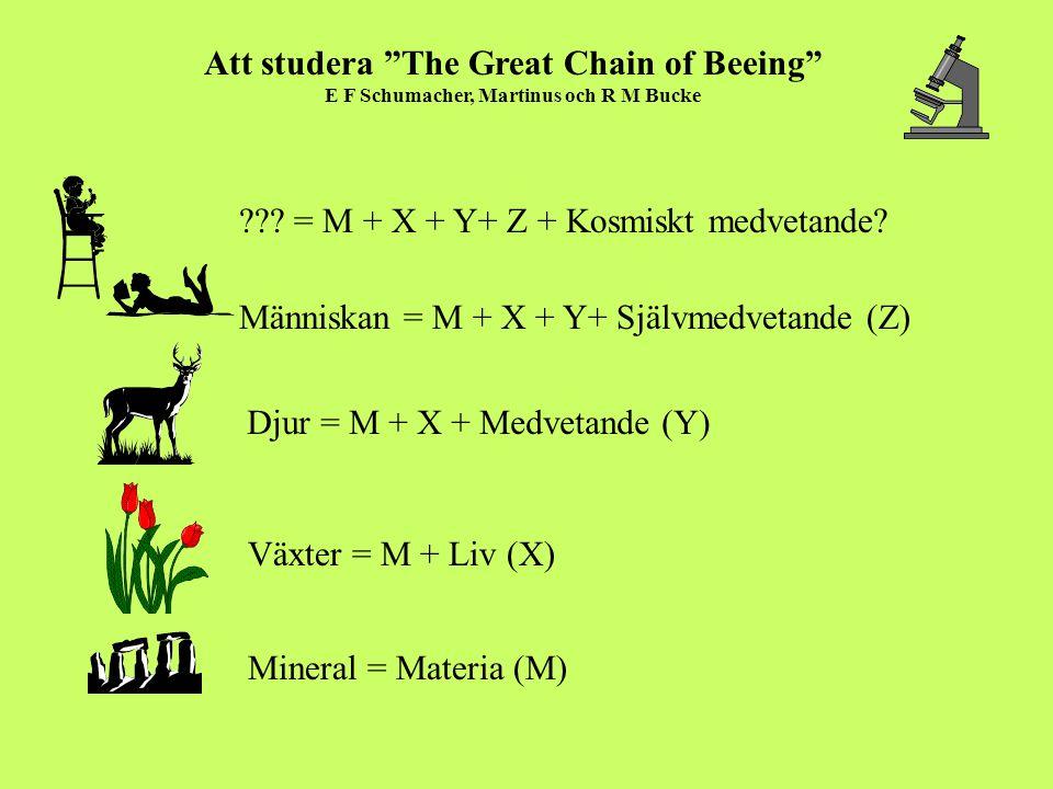 "Mineral = Materia (M) Växter = M + Liv (X) Att studera ""The Great Chain of Beeing"" E F Schumacher, Martinus och R M Bucke Människan = M + X + Y+ Själv"