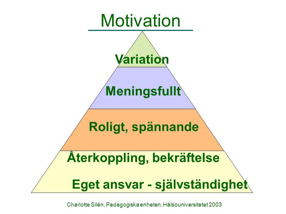 Charlotte Silén, Pedagogiska enheten, Hälsouniversitetet 2003 Motivation Variation Meningsfullt Roligt, spännande Återkoppling, bekräftelse Eget ansva
