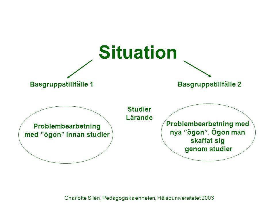 Problembearbetningsprocessen 1.Scenario Vad handlar det om.