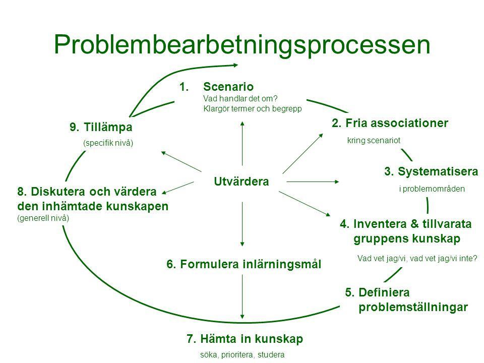 Problembearbetningsprocessen 1.Scenario Vad handlar det om? Klargör termer och begrepp 2. Fria associationer kring scenariot 3. Systematisera i proble