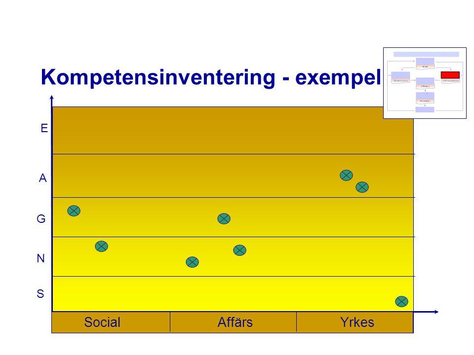 N G A E S Kompetensinventering - exempel SocialAffärsYrkes
