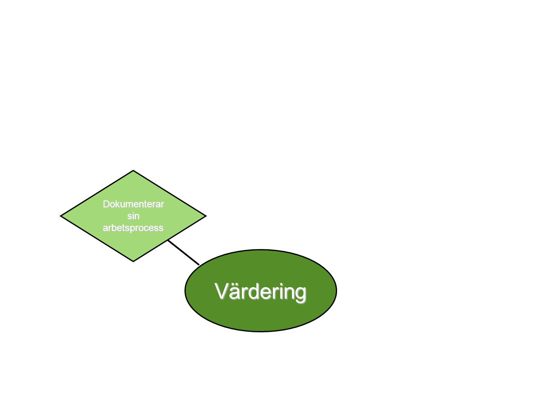 Värdering Dokumenterar sin arbetsprocess