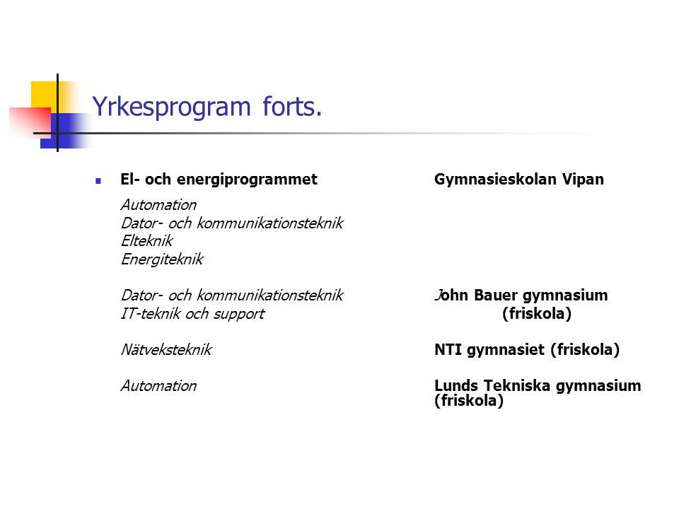 Yrkesprogram forts.  El- och energiprogrammetGymnasieskolan Vipan Automation Dator- och kommunikationsteknik Elteknik Energiteknik Dator- och kommuni