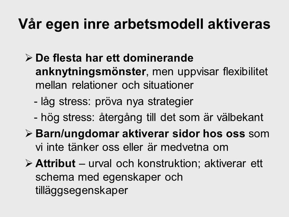 Vår egen inre arbetsmodell aktiveras  De flesta har ett dominerande anknytningsmönster, men uppvisar flexibilitet mellan relationer och situationer -
