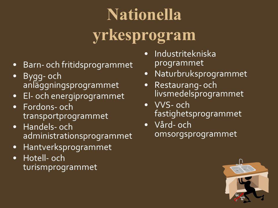 Nationella yrkesprogram •Barn- och fritidsprogrammet •Bygg- och anläggningsprogrammet •El- och energiprogrammet •Fordons- och transportprogrammet •Han