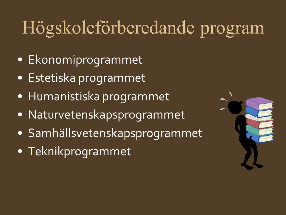 Högskoleförberedande program •Ekonomiprogrammet •Estetiska programmet •Humanistiska programmet •Naturvetenskapsprogrammet •Samhällsvetenskapsprogramme