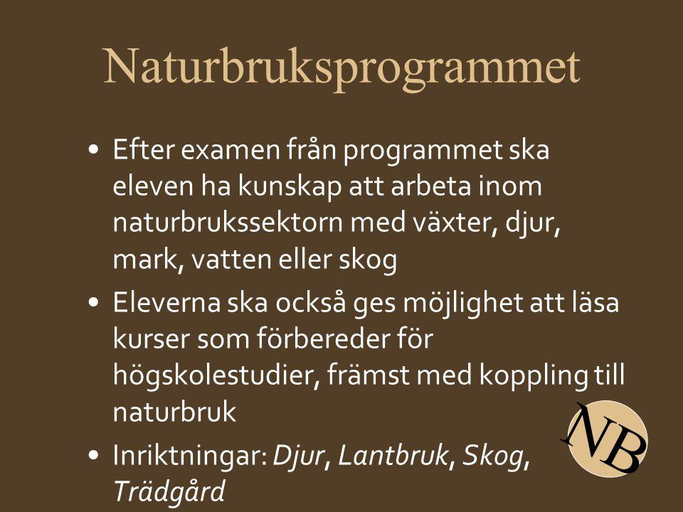 Naturbruksprogrammet •Efter examen från programmet ska eleven ha kunskap att arbeta inom naturbrukssektorn med växter, djur, mark, vatten eller skog •