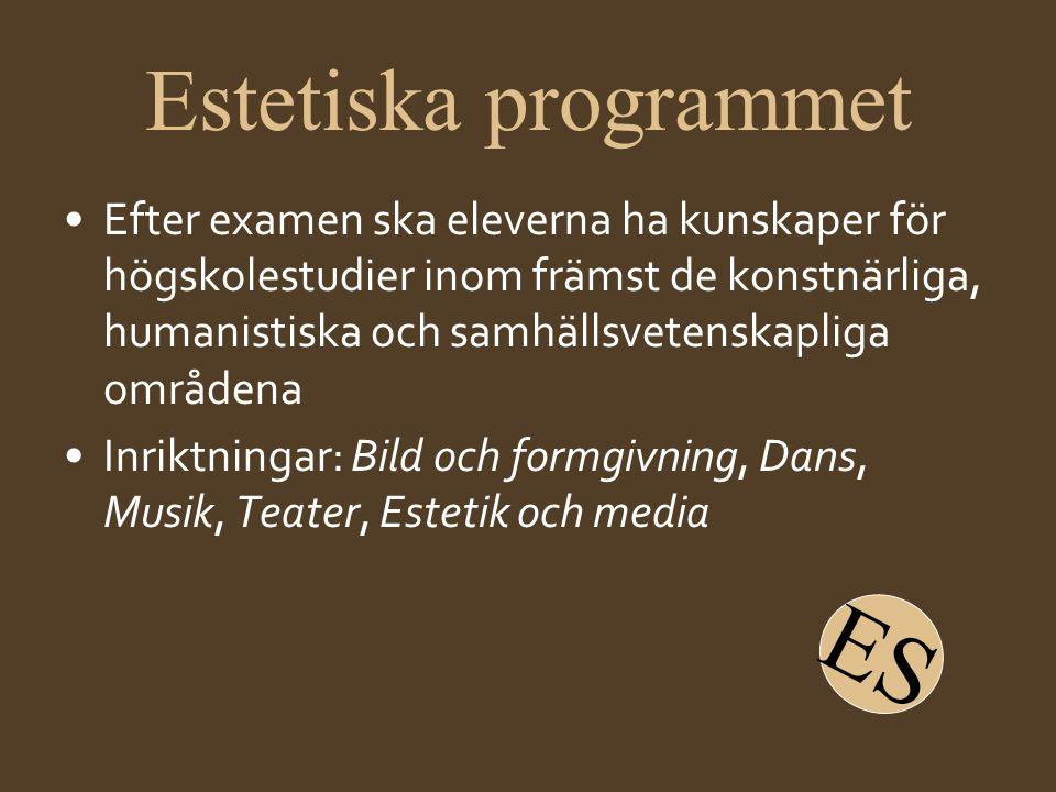 Estetiska programmet •Efter examen ska eleverna ha kunskaper för högskolestudier inom främst de konstnärliga, humanistiska och samhällsvetenskapliga o