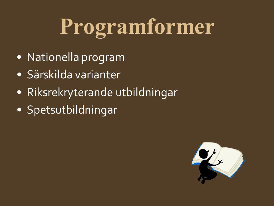 Nationella yrkesprogram •Barn- och fritidsprogrammet •Bygg- och anläggningsprogrammet •El- och energiprogrammet •Fordons- och transportprogrammet •Handels- och administrationsprogrammet •Hantverksprogrammet •Hotell- och turismprogrammet •Industritekniska programmet •Naturbruksprogrammet •Restaurang- och livsmedelsprogrammet •VVS- och fastighetsprogrammet •Vård- och omsorgsprogrammet
