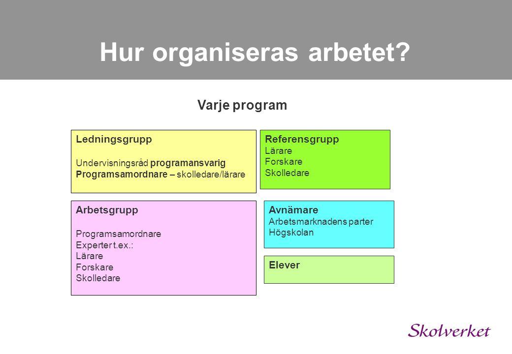 Hur organiseras arbetet? Kursplaneuppdraget Projektledning Projektgrupp Organisation för varje program Hela uppdraget Implementering och förankring Pr