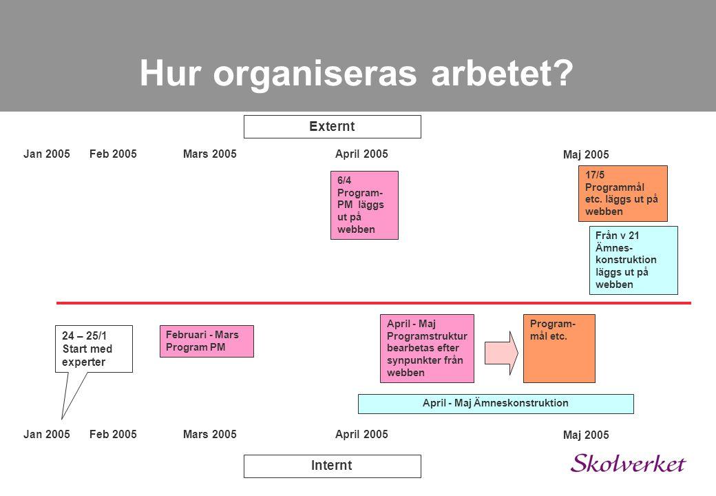 Hur organiseras arbetet? Ledningsgrupp Undervisningsråd programansvarig Programsamordnare – skolledare/lärare Arbetsgrupp Programsamordnare Experter t