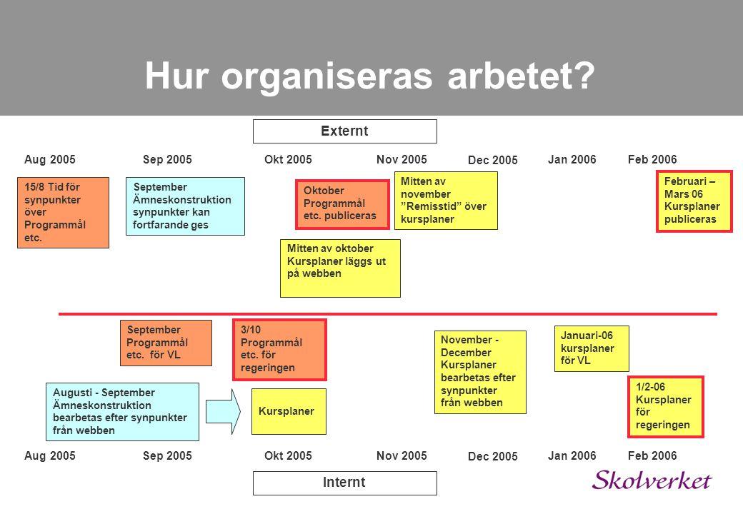 Hur organiseras arbetet? Jan 2005Feb 2005Mars 2005 April 2005 Maj 2005 24 – 25/1 Start med experter Februari - Mars Program PM April - Maj Programstru