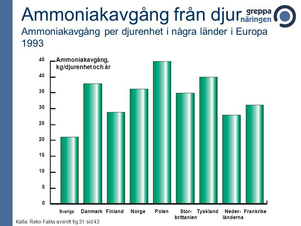 Ammoniakavgång från djur Ammoniakavgång per djurenhet i några länder i Europa 1993 Ammoniakavgång, kg/djurenhet och år 45 40 35 30 25 20 15 10 5 0 Sve