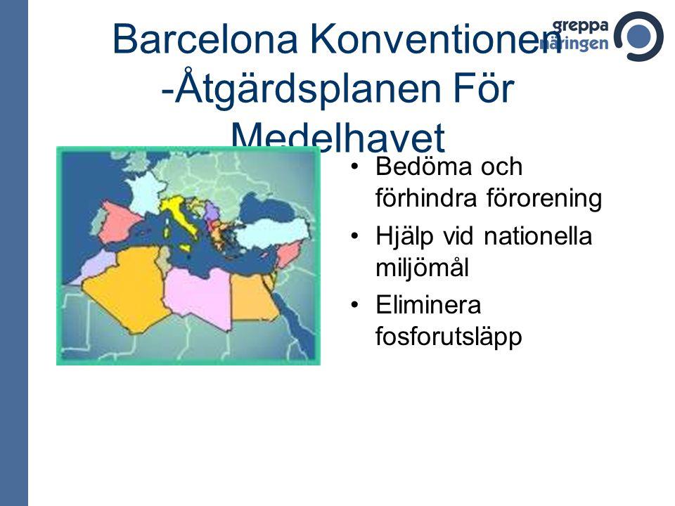 Barcelona Konventionen -Åtgärdsplanen För Medelhavet •Bedöma och förhindra förorening •Hjälp vid nationella miljömål •Eliminera fosforutsläpp