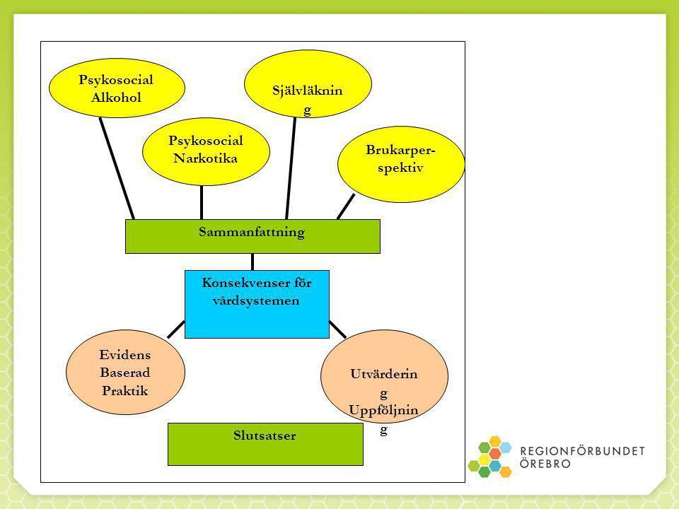 Definitioner  Brukare  Brukarperspektiv  Brukarmedverkan  Brukarinflytande  Brukarorganisation
