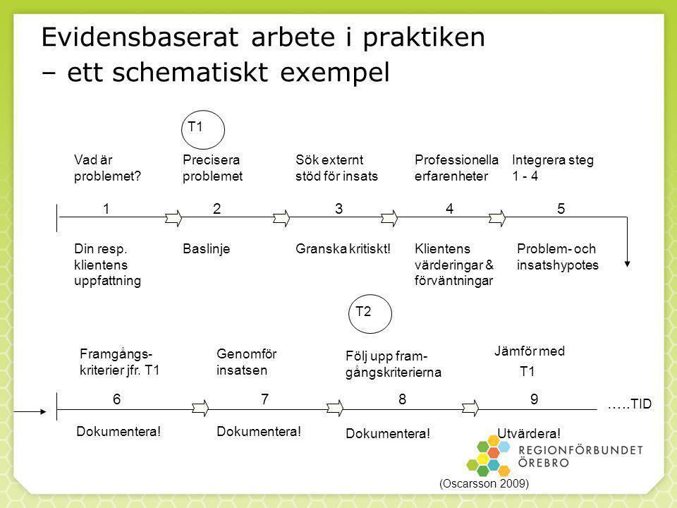 89 Evidensbaserat arbete i praktiken – ett schematiskt exempel Jämför med Vad är problemet.