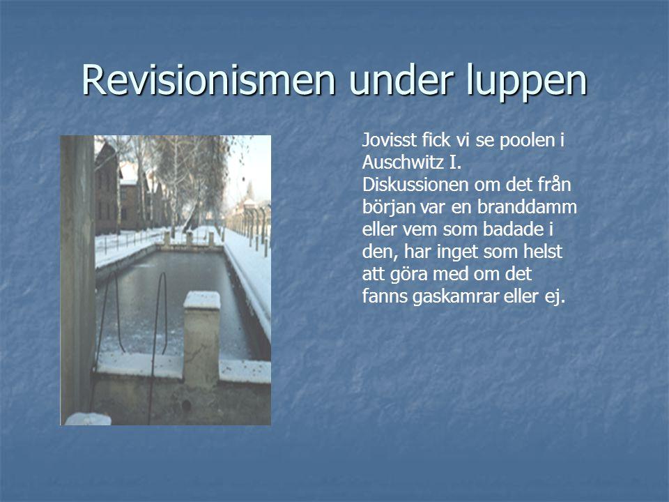 Revisionismen under luppen Jovisst fick vi se poolen i Auschwitz I. Diskussionen om det från början var en branddamm eller vem som badade i den, har i