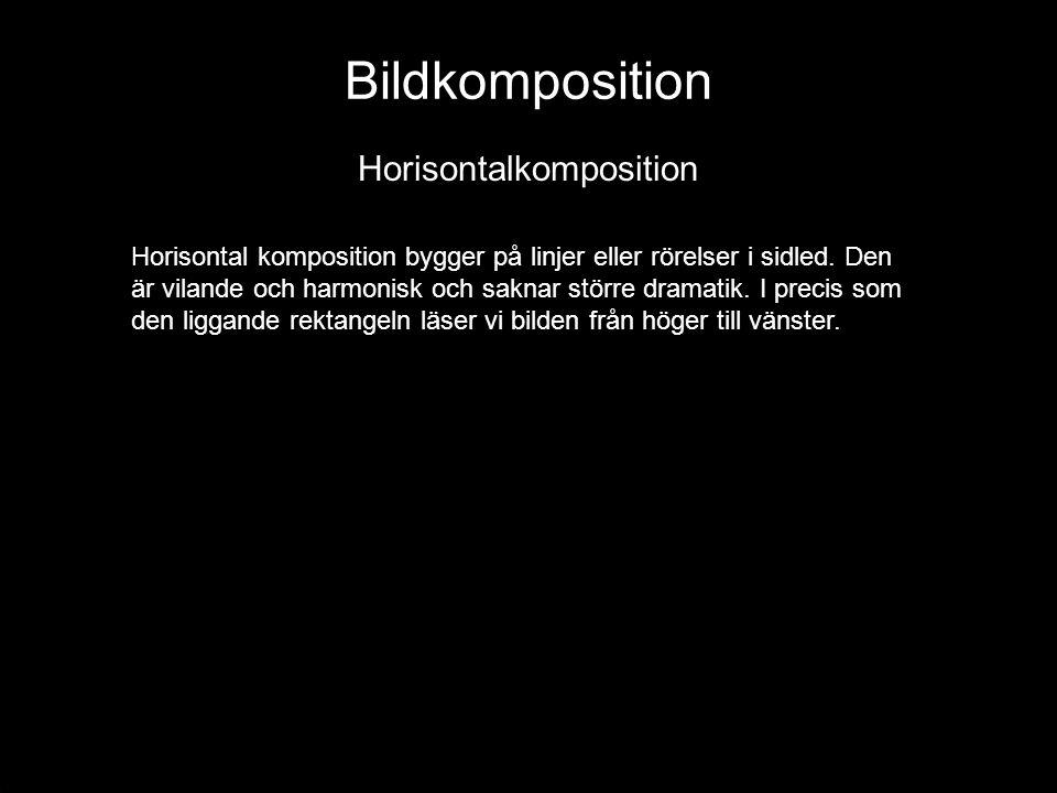 Bildkomposition Horisontalkomposition Horisontal komposition bygger på linjer eller rörelser i sidled. Den är vilande och harmonisk och saknar större