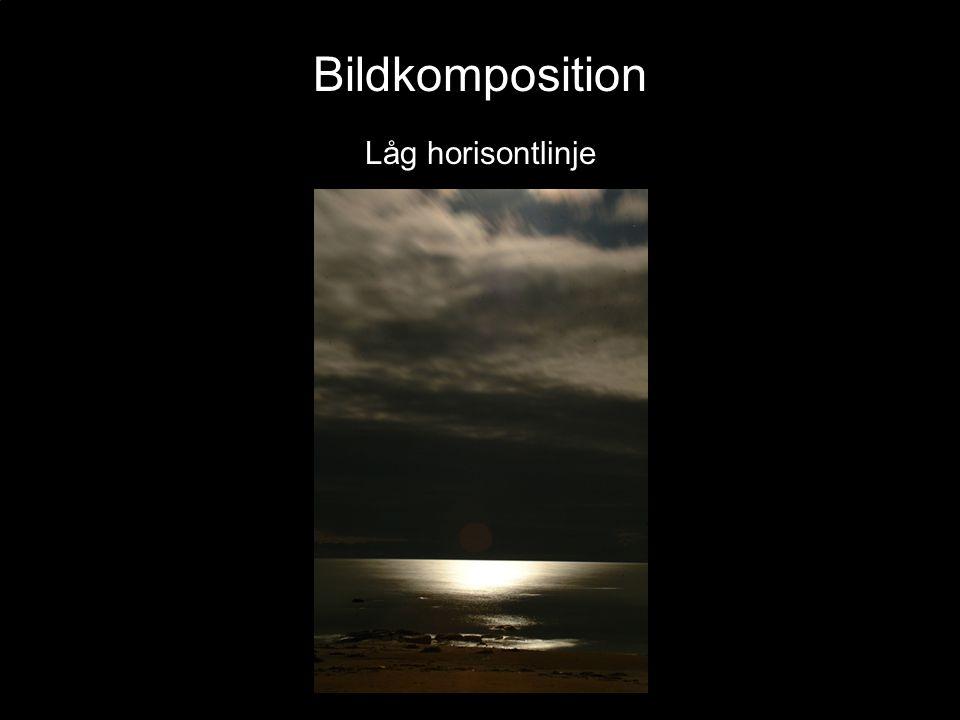 Bildkomposition Låg horisontlinje