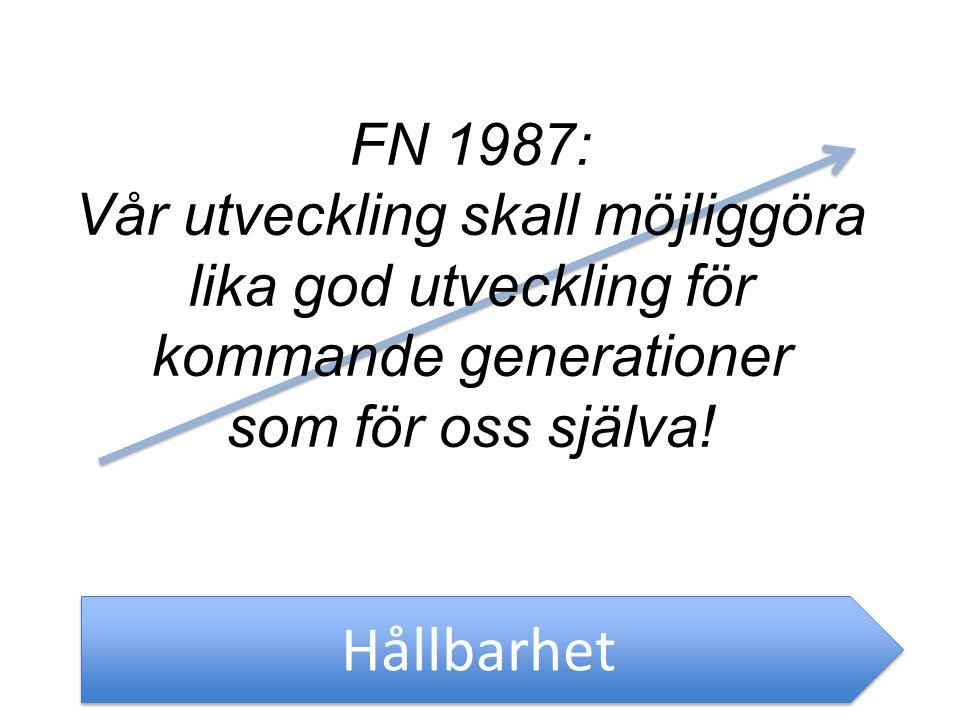 FN 1987: Vår utveckling skall möjliggöra lika god utveckling för kommande generationer som för oss själva!