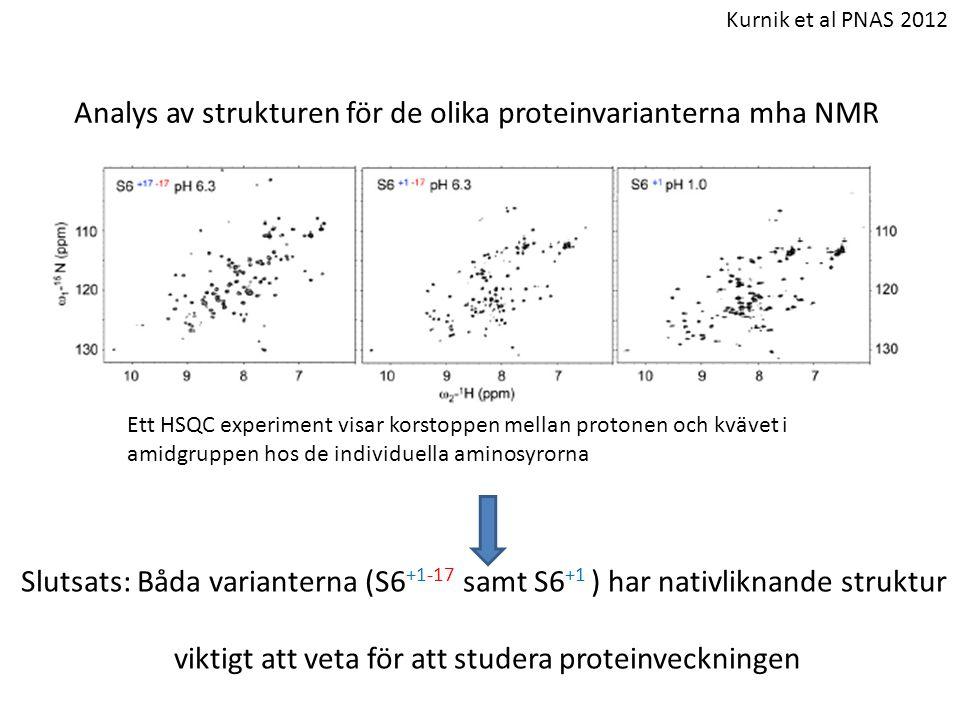 Analys av strukturen för de olika proteinvarianterna mha NMR Ett HSQC experiment visar korstoppen mellan protonen och kvävet i amidgruppen hos de indi