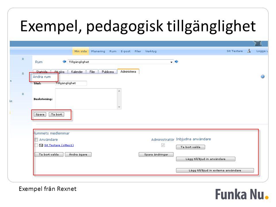 Exempel, pedagogisk tillgänglighet Exempel från Rexnet