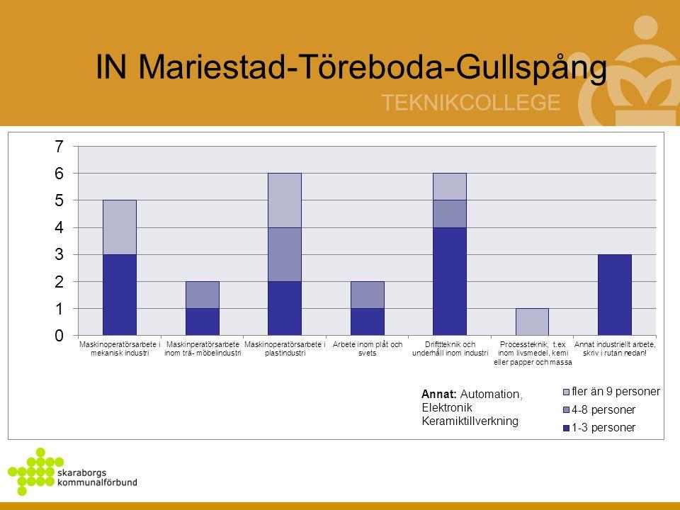IN Mariestad-Töreboda-Gullspång Annat: Automation, Elektronik Keramiktillverkning